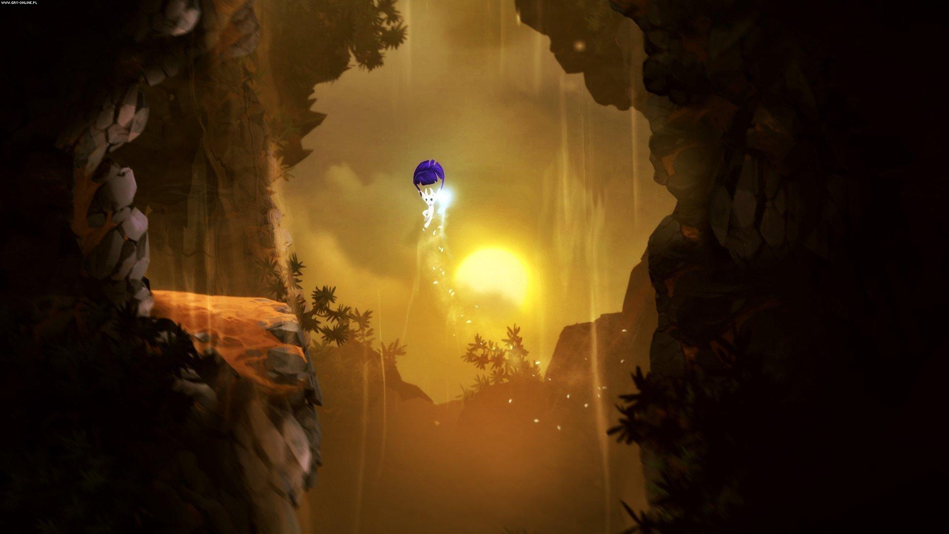 奥日与黑暗森林:终极版/精灵与黑暗森林 Ori and the Blind Forest