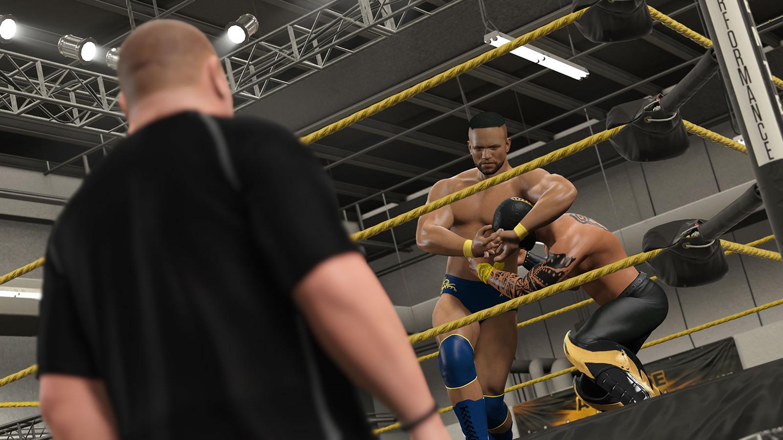 WWE 2K15/美国职业摔角联盟2K15/单机.同屏多人 集成1号升级挡DLC