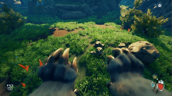 《野性》游戏截图
