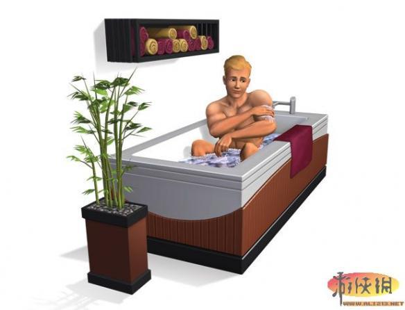 《模拟人生3:主卧室组合》游戏截图