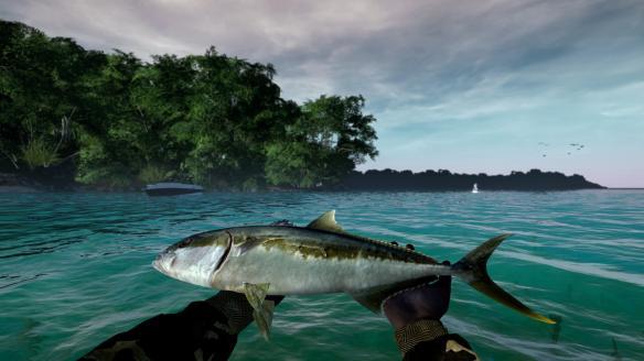 《终极钓鱼模拟》游戏截图