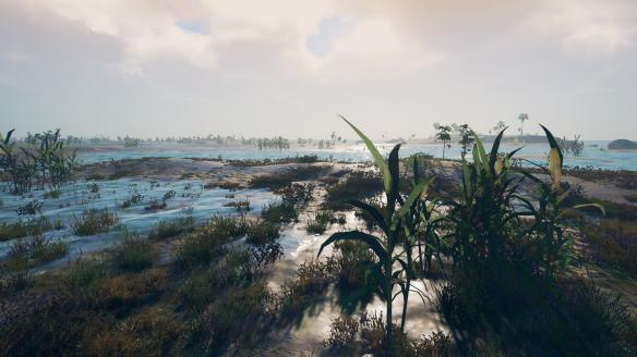 《Survisland》游戏截图-2