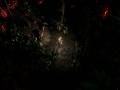 《裂缝破坏者》游戏截图-1小图