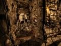 《龙骑士之墓》游戏截图-2