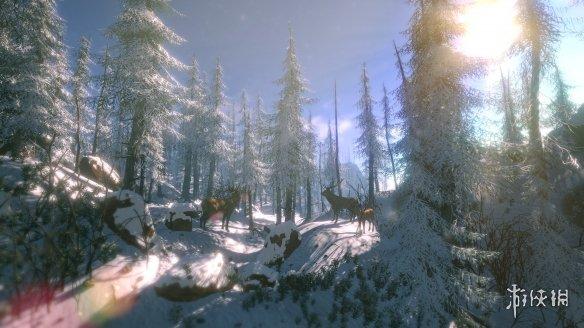 《FlowScape》游戏截图