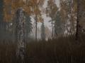 《30公里生存禁区:切尔诺贝利》游戏截图-5
