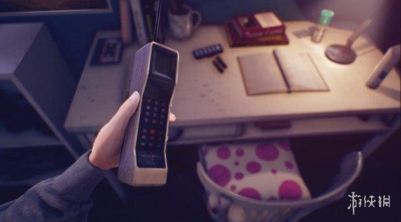 《瑞秋:福斯特自杀之谜》游戏截图