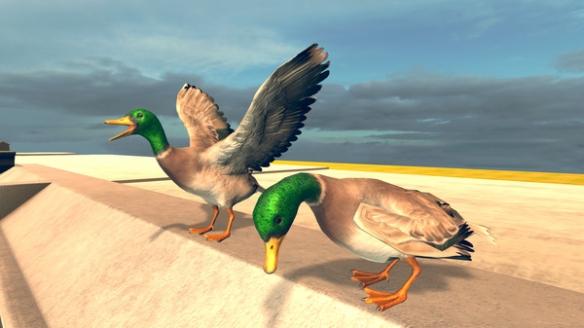 《鳥類模擬器》游戲截圖