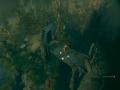 《钢铁危机》游戏截图-6