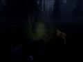 《皮行者狩猎》游戏截图-4