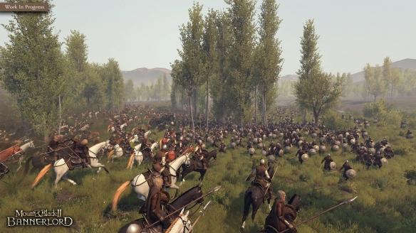 骑马与砍杀23