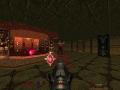 《毁灭战士64》游戏截图-7