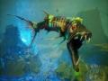 《食人鲨》游戏截图-3-2小图