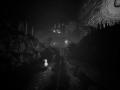 《完美世界大逃亡》游戏截图-10