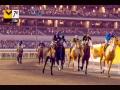 《家族传奇:马匹养成竞技》游戏截图-13