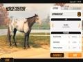 《家族传奇:马匹养成竞技》游戏截图-14