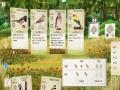 《展翅翱翔》游戏截图-5
