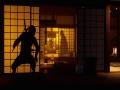 《忍者模拟器》游戏截图-4