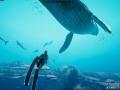 《深海超越》游戏壁纸-3