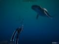 《深海超越》游戏壁纸-6