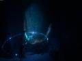 《深海超越》游戏截图-2
