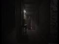 《生化危机8》游戏截图-3