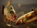 《捕获物:鲤鱼和大鱼》游戏截图-7