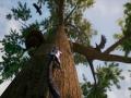 《逃离:生存系列》游戏截图-3