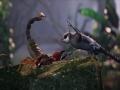 《逃离:生存系列》游戏截图-5