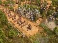 《帝国时代3:决定版》游戏截图-3小图