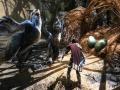 《阿玛拉王国:惩罚重制版 》游戏截图-9小图