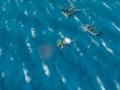 《海洋之王》游戏截图-8
