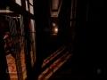 《在死寂之夜》游戏截图-1