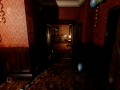 《在死寂之夜》游戏截图-10