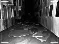 《我床底下的黑暗》游戏截图-6小图