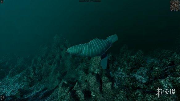 创造海洋世界 沙盒模拟创造游戏《Ecosystem》专题上线