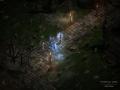 《暗黑破坏神2重制版》游戏截图-2-3