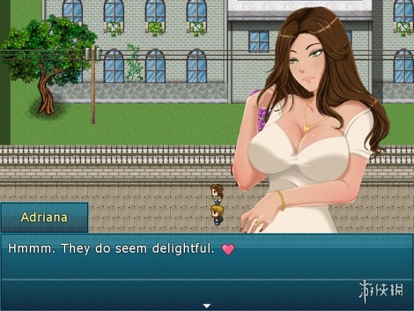 《一夏之花》游戏截图-5