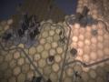 《庇护所2》游戏截图-4小图