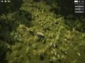 《自然本能》游戏截图-5