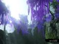 《对马岛之魂:导演剪辑版》游戏截图-4小图