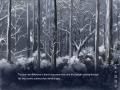 《雪中誓约》游戏截图-2小图