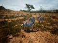 《动物世界生存》游戏截图-4小图