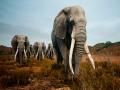 《动物世界生存》游戏截图-6小图