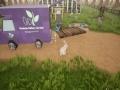 《兔子温室》游戏截图-3