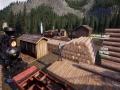 《铁路建造模拟器》游戏截图-7小图